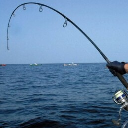 ta canne à pêche